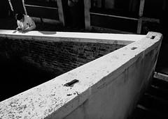 la tassa sui sogni ([scara]) Tags: venice italy man italia ponte uomo venezia fp4 luce leicam6 geometrie scratchcard marmo ilfordfp4 summicron35 grattaevinci rascaygana codroma