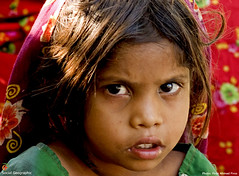 Save the Girl Child-00182 (Social India) Tags: poverty portrait india asia humanity photojournalism makepovertyhistory society photoessay extremepoverty under6 humancondition developingworld girlchild whiteband peoplesportrait righttoeducation savethegirlchild firozahmadfiroz socialgeographic indiangirlchild stopfemaleinfanticide righttofoodheath socialawarness socialattitudes saynotosexselectionandfemalefoeticide saynotodowry saynotoviolenceagainstwomen sayyestowomensresistanceeducationandempowerment unitetoendviolenceagainstwomen