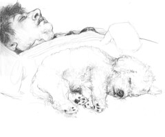 descanso (.carito.) Tags: sleeping pet relax peace drawing paz siesta dibujo mascota descanso durmiendo plcido