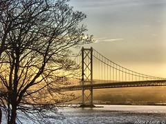 Forth road bridge, FIFE, UK (arash_rk) Tags: uk scotland persian iran unitedkingdom fife britain arash iranian pars soe forthroadbridge mellat   karimi olympuse20  mywinners aplusphoto megashot   arashrazzaghkarimi  parsianpark