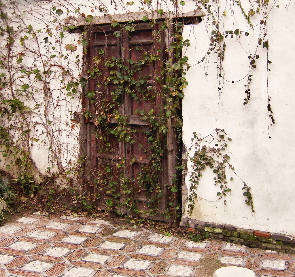 door to let in and out - free to come and go