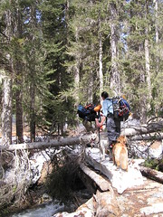 Crossing DeRoux Creek in May 2007