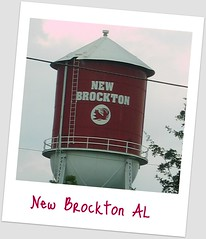 New Brockton AL Water Tower Real Estate