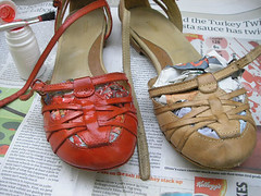 Sapato vermelho {5}