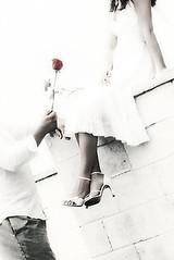 13 (elegantunion) Tags: wedding west canon tampa photography orlando florida miami union creative gear palm sarasota elegant artisitc f12 brach videography shootsac