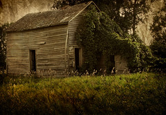 what I love... (McMorr) Tags: old family house texture abandoned love home rural interestingness place decay farm country rustic neglected iowa explore forgotten imagine weathered disused homestead discarded forsaken deserted decayed dilapidated deterioration mcmorr