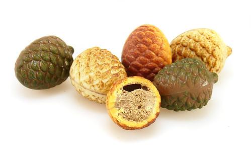 Belgian Pine Cones