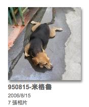 Picasa 網路相簿權限設定