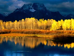 Quaking Aspen, Mount Moran, Grand Tetons, Wyoming (digital deadhead) Tags: ocean life sanfrancisco china park christmas old city flowers red summer vacation sky music food plants white newyork canada france mountains flower green london art history love festival japan night river square landscape photography concert nikon montana rocks flickr peace time live imagine kindness reflects deadhead obsessions