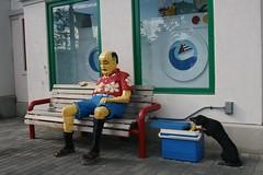 Legoland (r3v || cls) Tags: sleeping dog man bench lego thief dachsund stealing legoland