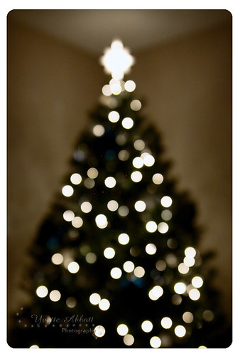 blurry lights on Tree