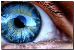 Eye Without A Face (PHOTOPHOB) Tags: blue iris macro reflection eye azul ojo eyes blu azure olho blau augen mavi auge occhio oog cerulean il gz oko eyeshot je okulo gello aplusphoto photophob reflectyourworld