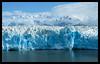 """The face of Hubbard Glacier (Alan Vernon.) Tags: blue ice face alaska landscape scenery russell scenic glacier fjord glacial hubbard disenchantmentbay alaskacruise2008 alanvernon """"copyright2008alanvernon"""" yukatat"""