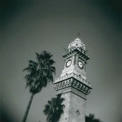 Clock Tower (sonofwalrus) Tags: blackandwhite bw film holga lomo lomography middleeast scan clocktower palmtrees syria aleppo  hpc5380