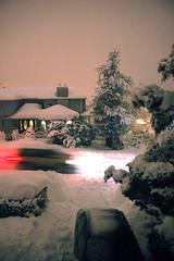 Third Week of Snow