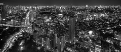 Tokyo from Tokyo Tower (. : Jonathan Fiamor : .) Tags: from street city wedding portrait sky people urban bw white black tower cars landscape lights star tokyo san francisco photographer traffic starfish jonathan else everything hdr buldings megalopolis jonathanfiamorsanfranciscowedding portraitandeverythingelsephotographerwwwfiamorcom fiamor wwwfiamorcom