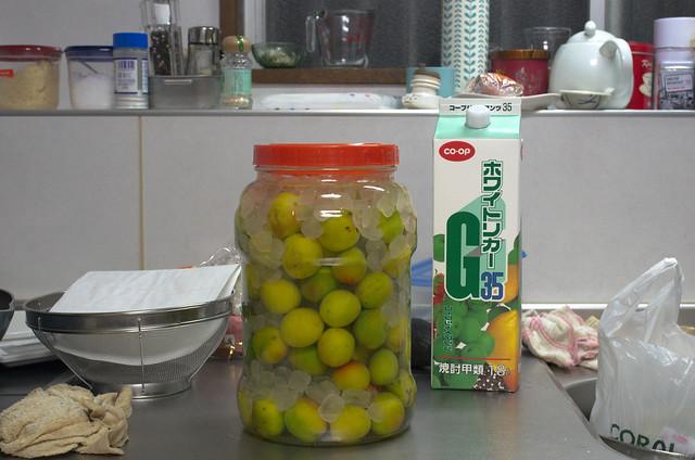Homemade Umeshu
