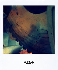 "#Dailypolaroid of 15-6-11 #fb #264 • <a style=""font-size:0.8em;"" href=""http://www.flickr.com/photos/47939785@N05/5848493998/"" target=""_blank"">View on Flickr</a>"