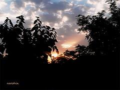غروب های دلتنگی ِ من (no0shin) Tags: light alone god tranquility calm depressed آرامش دلتنگی