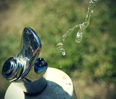 H2O (i) (JoelDC) Tags: park macro water grass nikon day sunny australia h2o nsw button tap waterfountain drinkingfountain bubbler 3570mm d80 georgeshall lakegillawarna