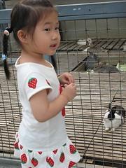 20080410-yo與兔子-15