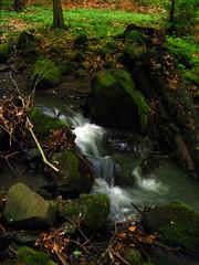 A forest waterfall (K_Liff) Tags: light green water rock forest river waterfall ukraine zakarpattia nevicke