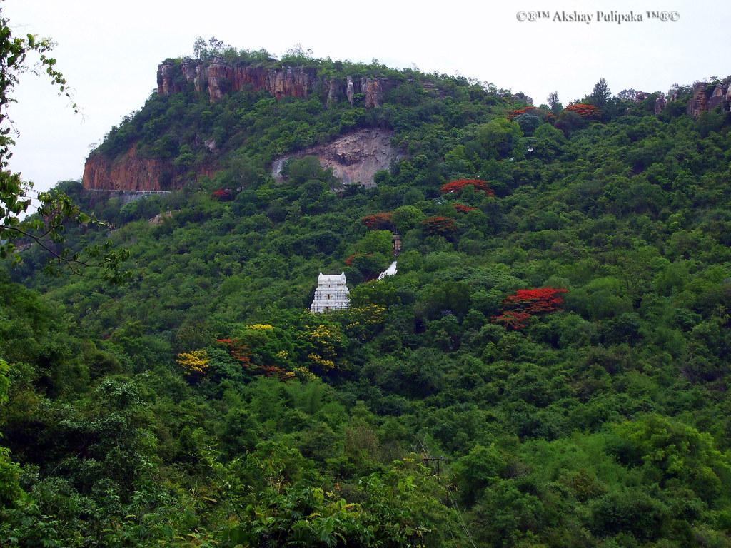 Tirumala Temple @ Tirupati Hills
