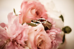 Mike and Allison (~*SarahJane*~) Tags: seattle wedding canon washington married marriage wa weddings orcasisland justmarried 70200mm 40d oncefive once5 sarahmitzel