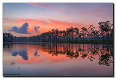 Mosquito Dawn (Fraggle Red) Tags: red sky lake reflection clouds sunrise dawn nationalpark florida evergladesnationalpark campground jpeg pinetrees hdr mosquitoes canonefs1022mmf3545usm whatwasithinking enp 3exp longpinekey kartpostal golddragon mywinners abigfave theunforgettablepictures miamidadeco toomanyofthem dphdr absolutelystunningscapes gotupat415amtobeeatenalive mosquitorepellentisuseless theyevengotthroughmyjeans