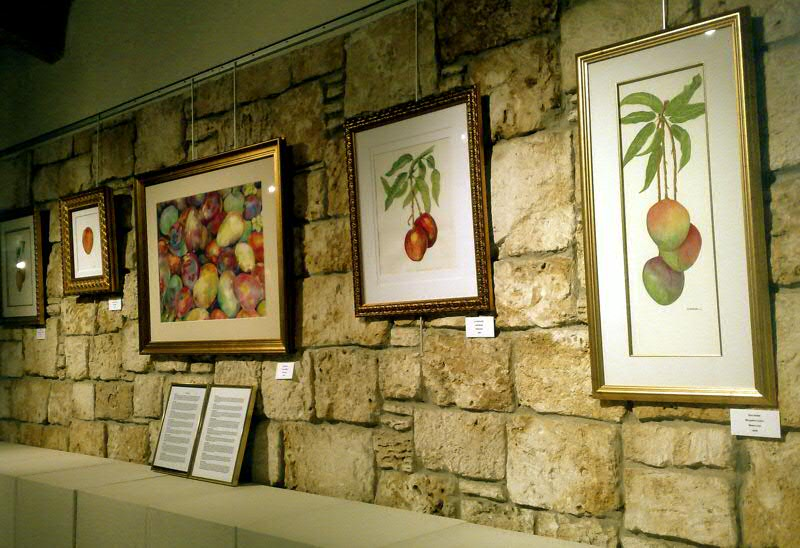 mango art at fairchild