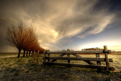 The Gate (Esther Seijmonsbergen) Tags: morning snow holland dutch clouds composition easter landscape gate mosaic thenetherlands explore willow esther willows hdr foreground gouda weepingwillows digitalworld tthdr impressedbeauty foregroundinterest multimegashot magicdonkeysbest estherseijmonsbergen thetempleofaphrodite wwwdigitalhdrcom wwwdigitalexposurephotographynl