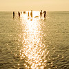 children of the ocean / 海洋之子 (YENTHEN) Tags: sea taiwan taichung ricoh 高美溼地 grd ricohgrd gaomeiwetlands yenthen