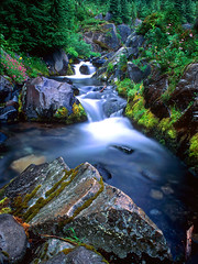 Paradise River Mt. Rainier N.P. (Keith Willits Photo) Tags: seattle park flowers moon creek river washington stream paradise heather vivid peak mount national rainier cascades moonlight paintbrush lupine pinnacle plummer platinumphoto yourbestshot theunforgettablepictures ~vivid~ theperfectphotographer goldenvisions guasdivinas
