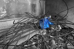 Prigionia ([d.o.c.]) Tags: doc 2008 geo discoteca decadenza gatteomare marcobalzani geodrome mesibisco