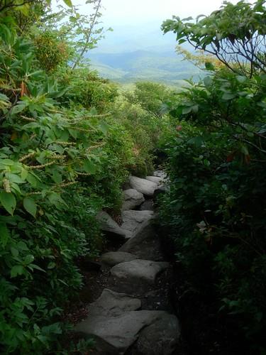 Trail Corridor