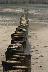 The path (wout.) Tags: beach canon ameland hollum eos400d