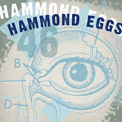 Hammond Eggs 46
