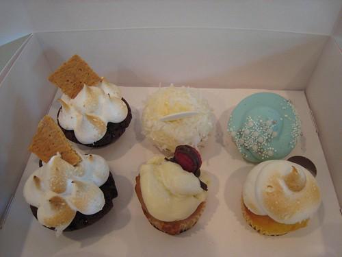 Minis Cupcakes.JPG
