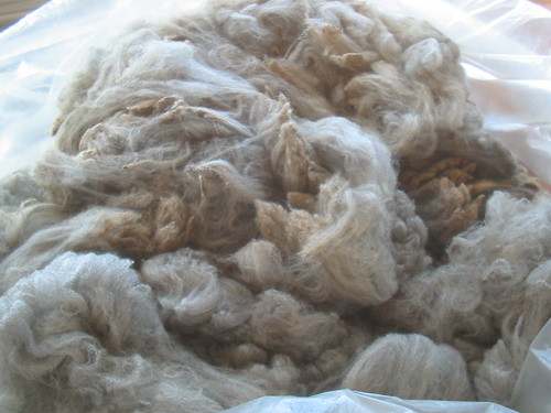 CWFF Merino/Corriedale Fleece