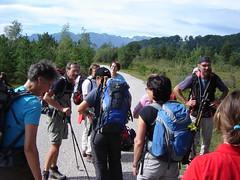 Alpen in Sicht !