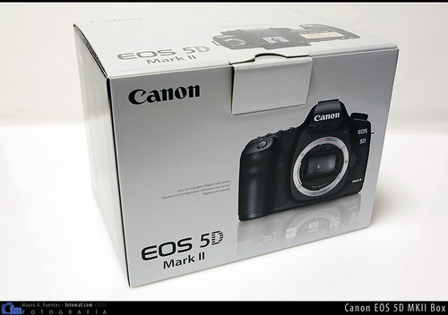 3117154618 2a405afcf2 Canon 5D MKII: Primer contacto