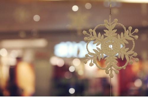 Snowflake [292/365]