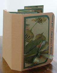 Accordian Mini in a Box