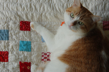 elliot's quilt by you.
