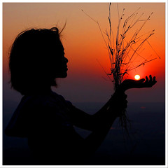 A bouquet of dried grass for the Sun (JannaPham) Tags: world sunset vacation sun india girl grass silhouette goa bouquet karma dried emotions 500x500 jannapham