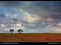 DAS DE VIENTO (Miguel_CD) Tags: cloud tree landscape paisaje rbol nube castilla palencia pramo eos40d 70200lf4is goldstaraward worldwidelandscapes