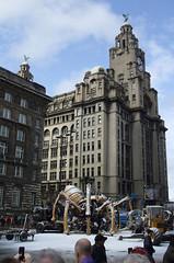The Spider, La Princesse, Liverpool (Lydie's) Tags: uk england clock liverpool spider merseyside liverbuilding streettheatre liverpool08 lamachine laprincesse hccity