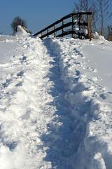 walking in the snow (Tomsch) Tags: schnee snow cold austria österreich walk photowalk kalt niederösterreich spaziergang loweraustria mostviertel