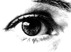 Auge (ziso) Tags: bw sw auge