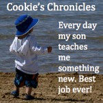 cookies_chronicles_button